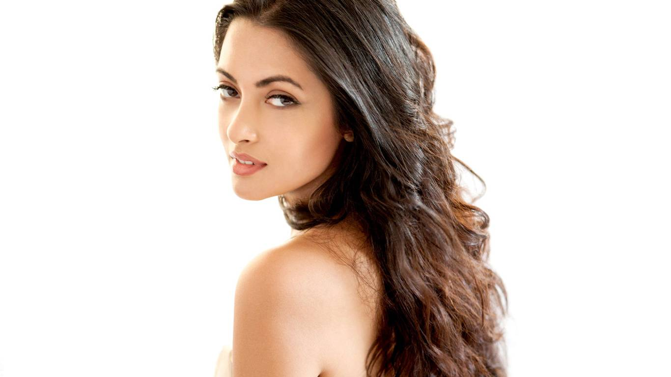 Riya Sen Wallpapers
